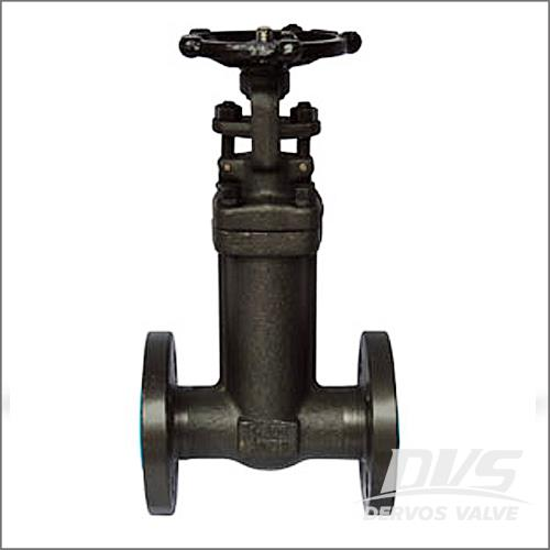 Forged Bellow Seal Gate Valve, A105N, CL150-600 1/2-4 Inch