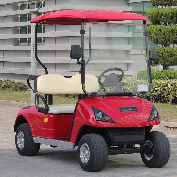 2 seat electric golf buggy with CE