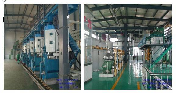 Pretreatment Plant/Oil Pressing Line/Oil Extraction Equipment