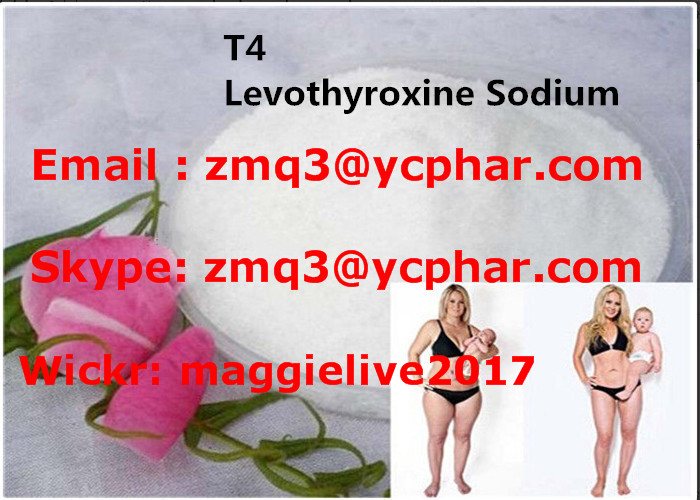 T4 Fat Loss Hormones Levothyroxine Sodium For Burning Fat CAS 25416-65-3