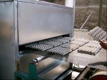 egg tray machine 2000 PCS 3000 PCS per hour