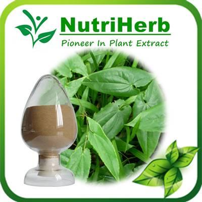 Natural Epimedium Extract / Horny goat weed extract 5%-98% Icariin
