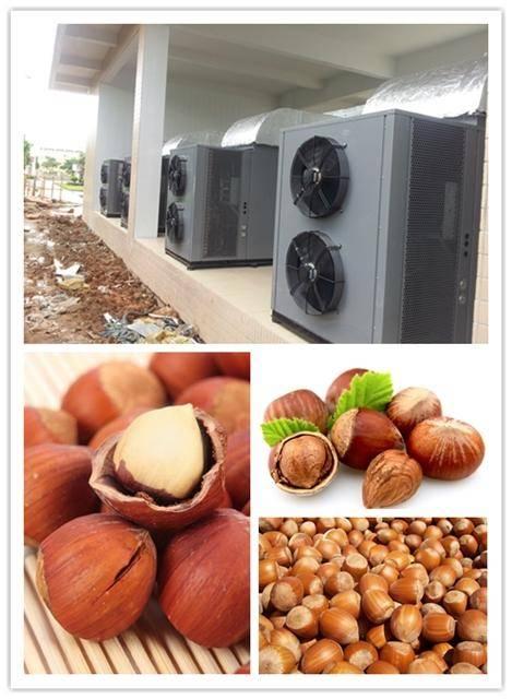Fully automatic LCD controller hazelnut dryer machine/walnut dehydrator,basic on heat pump dryer tec