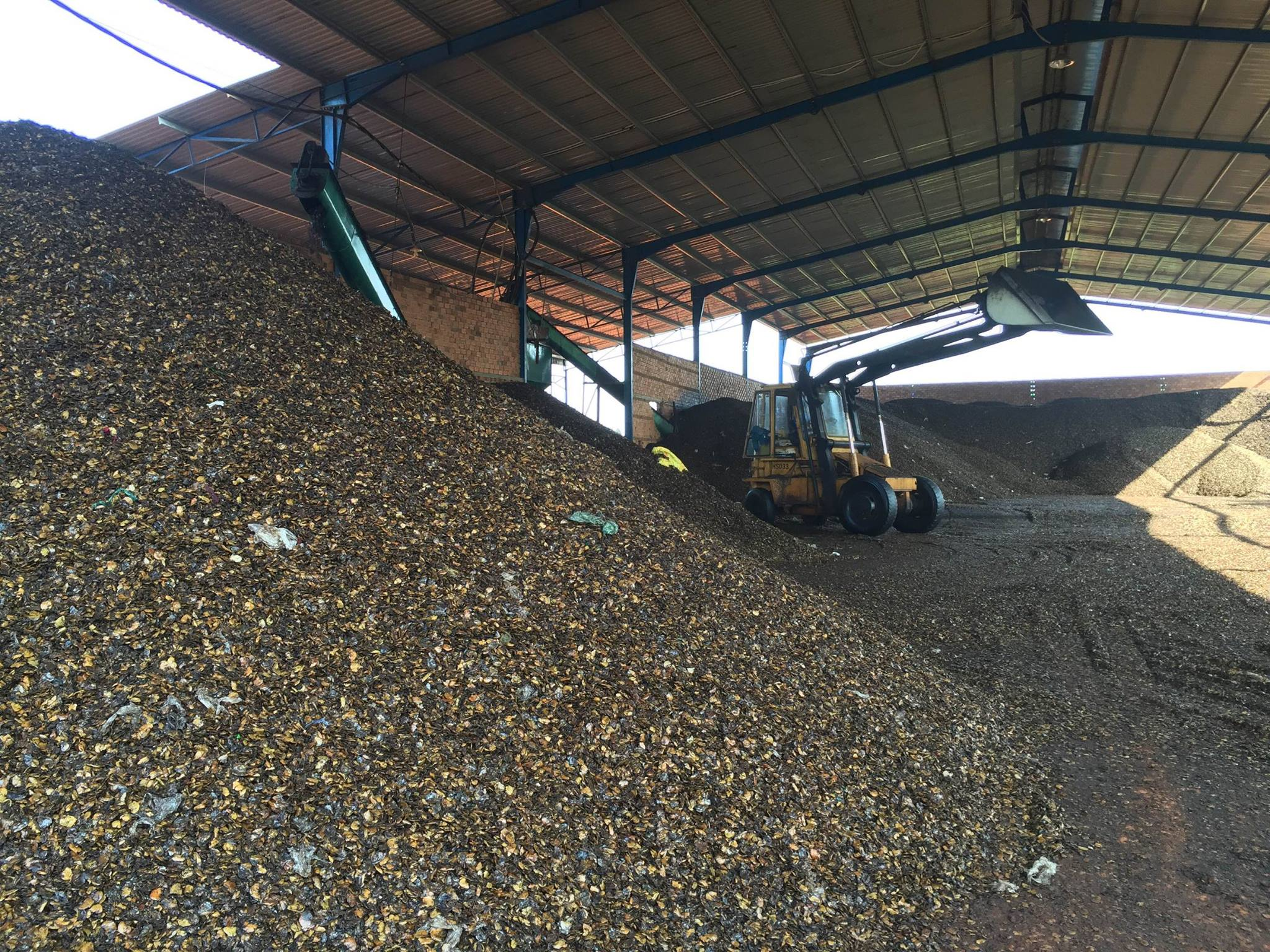 cashew nut shell extraction CSNE