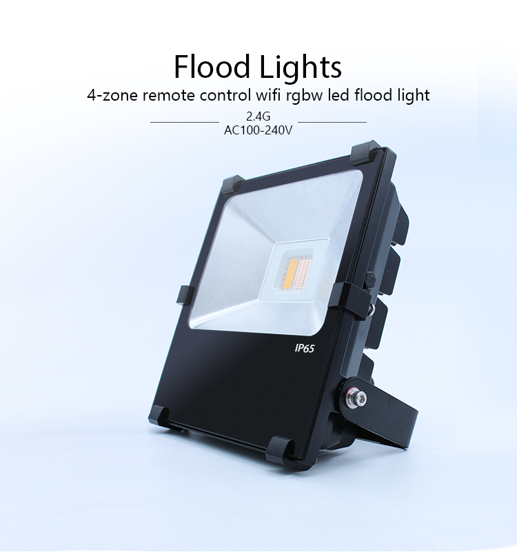 Outdoor garden security RGB color IP67 IP65 mean well driver waterproof 10w LED Floodlight, led floo