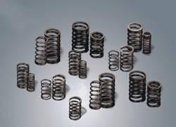 engine valve springs