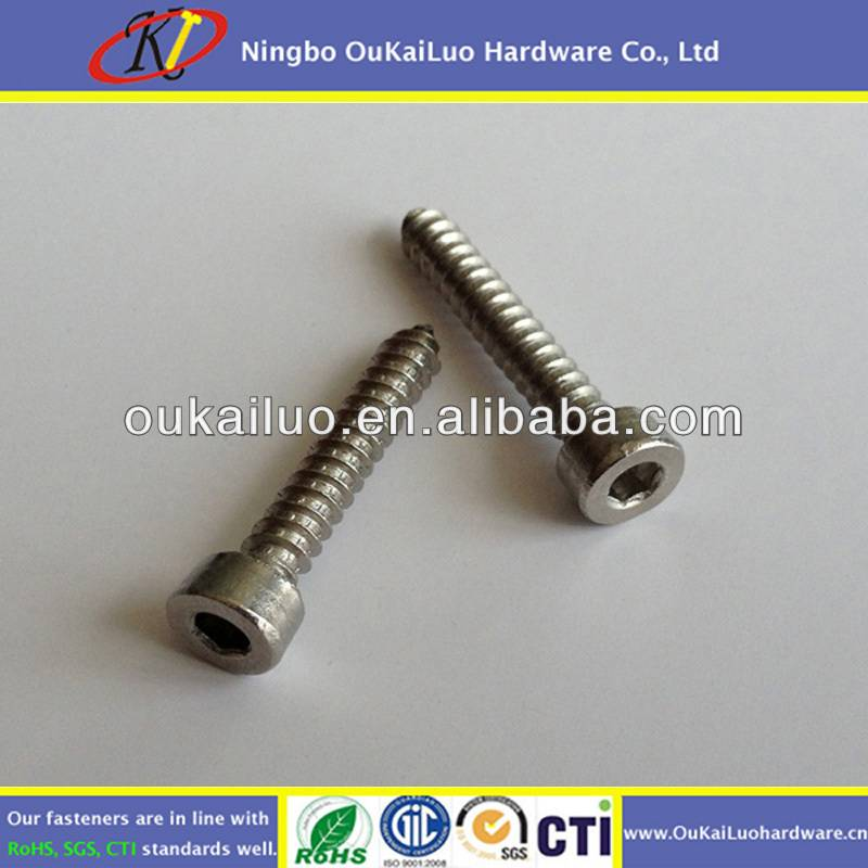 Stainless Steel Hexagon Socket Head Self Tapping Screws