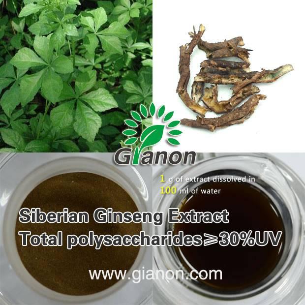 Acanthopanax senticosus polysaccharide 30%