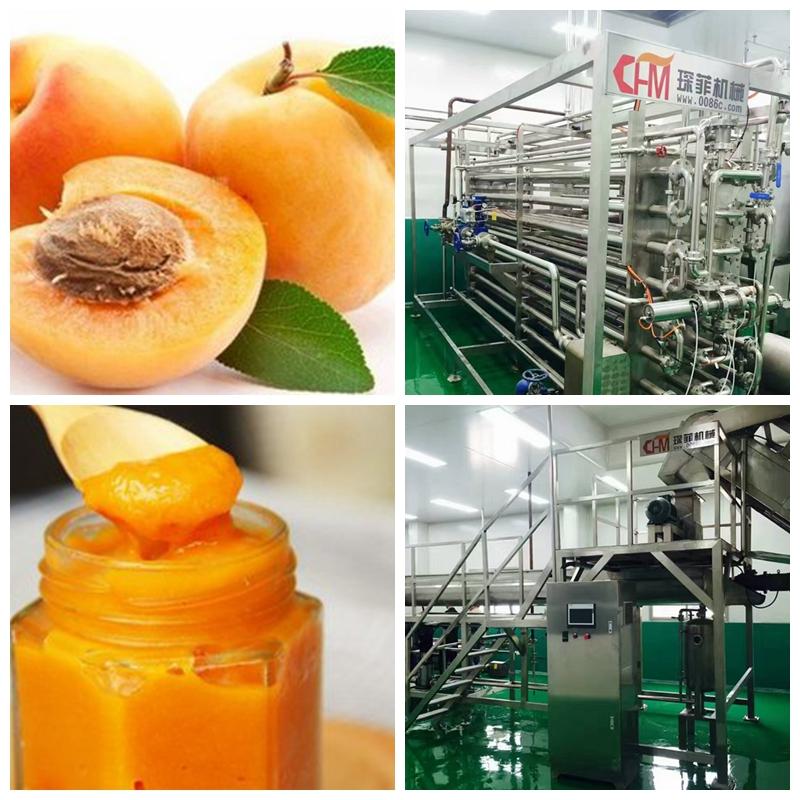 Apricot paste production line machine