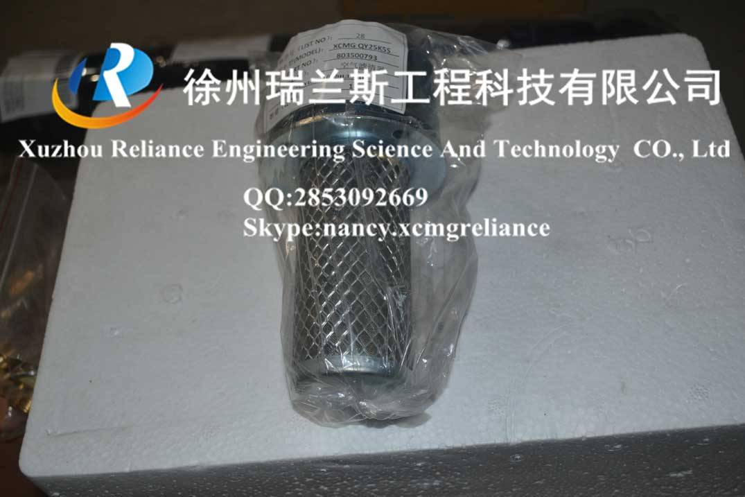 XCMG spare parts-crane-qy25k5s-Air filter-803500793