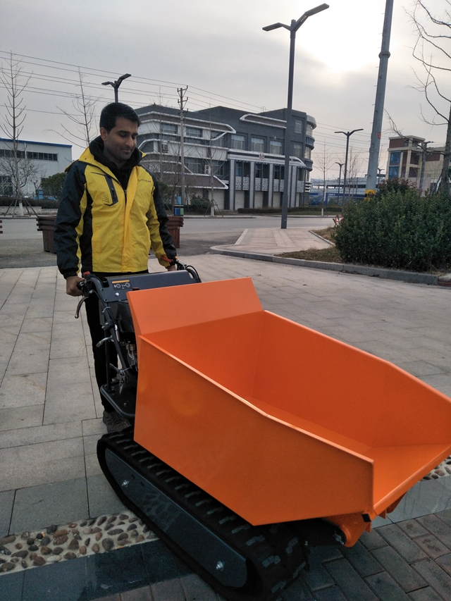 Brand 500kg load hydraulic mini dumper crawler 6.5hp machine with CE