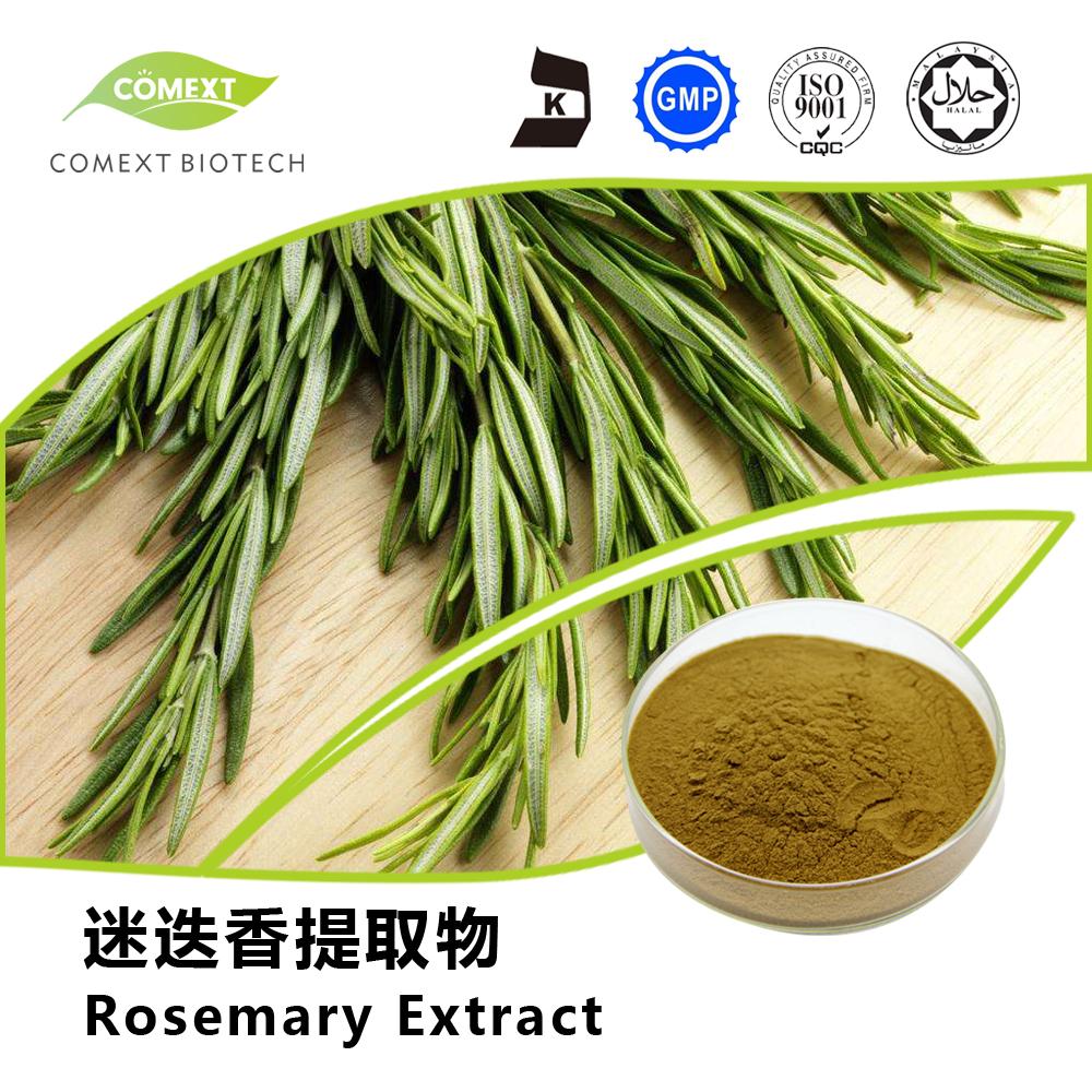 2.5%~98% Rosmarinic Acid Powder Rosemary Leaf Extract