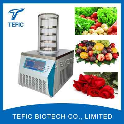Small Vacuum Freeze Dryer for Home Use, Used Freeze Dryers for Sale