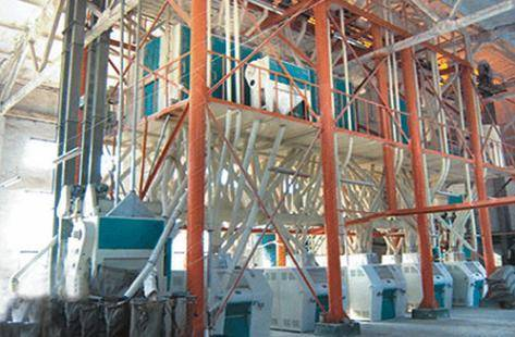 80T Steel frame structure of Wheat Flour Processing equipment