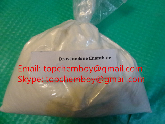 Masteril Drostanolone Enanthate Steroid Hormone
