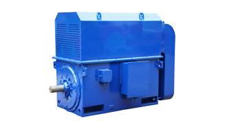 High voltage IEC motors