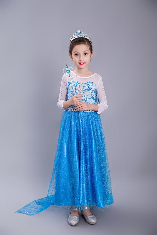Frozen Dress Anna Princess Dress Elsa Snow Party Queen Costume