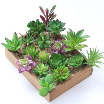 Factory hot sale faux mini succulent