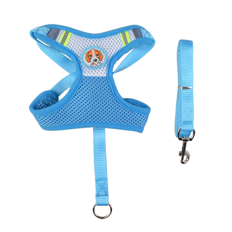 Embrodery logo dog harness and lead for small dog