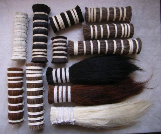 horse tail/mane hair