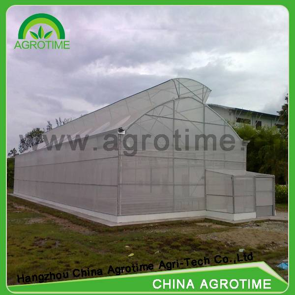 butterfly ventilation greenhouse with roof ventilation for sale