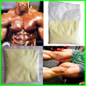 Injectable Parabolan / Trenbolone Enanthate/ Tren Enan CAS 472-61-546 Anabolic Steroids for Male Bod