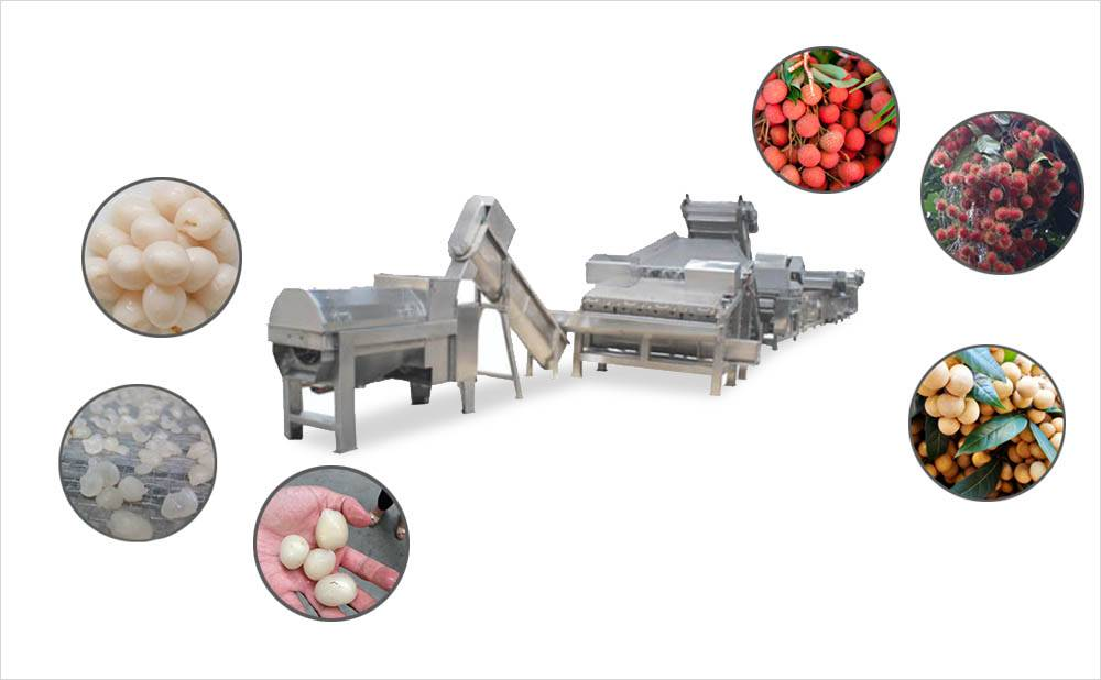Lychee Longan Rambutan Peeled And Pit Removed Processing Line - For Making Canned Or Dry Pulp