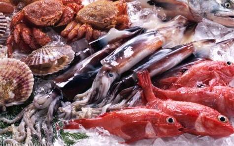 Fresh fish, frozen and cooked