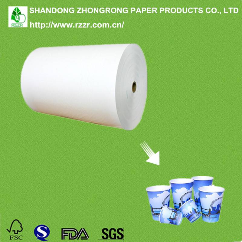 PE coated paperboard wholesale from China