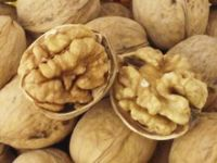 Quality Walnuts And Walnuts Kernel