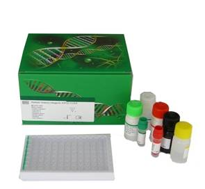 elisa kit for research/routine use