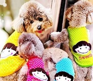fashionable lovable pet apparel pet clothes