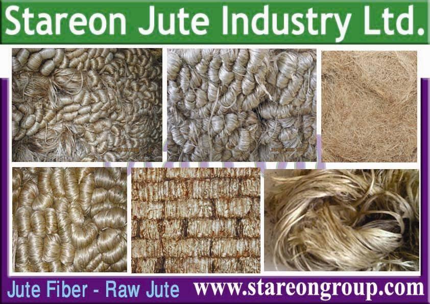 Jute Fibre (Raw Jute)