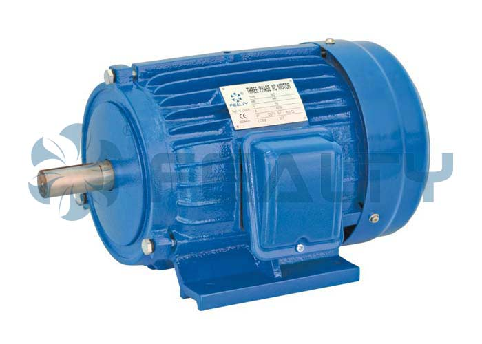 AEEF three-phase induction motor