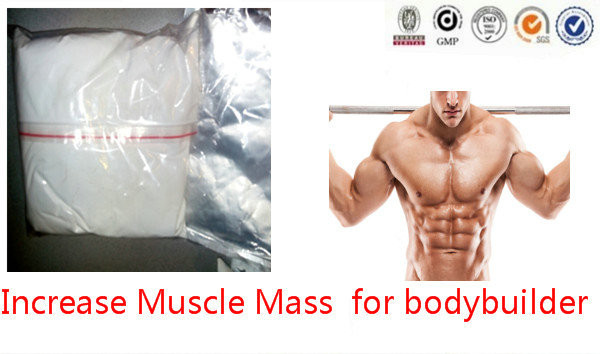 Bodybuilding Anabolic Steroid Powder 1, 3-Dimethylpentylamine DMAA