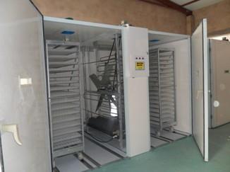 egg incubator OTS&OTH