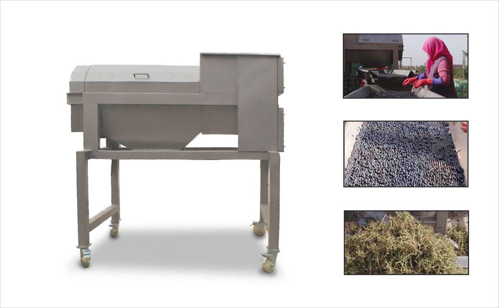Grape Stemming Machine