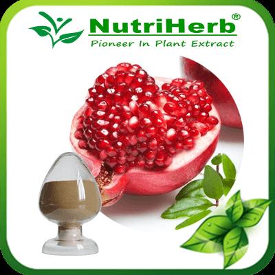 Pomegranate Peel Extract/ Pomegranate Extract 40% 90% Ellagic Acid