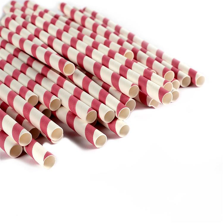 Biodegradable PLA DRINKING STRAWS
