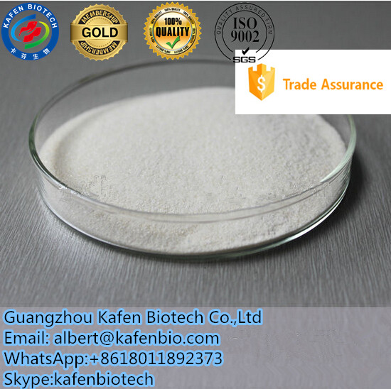 99.8% USP Grade Lidocaine Base Xylocaine For Anting Pain 137-58-6