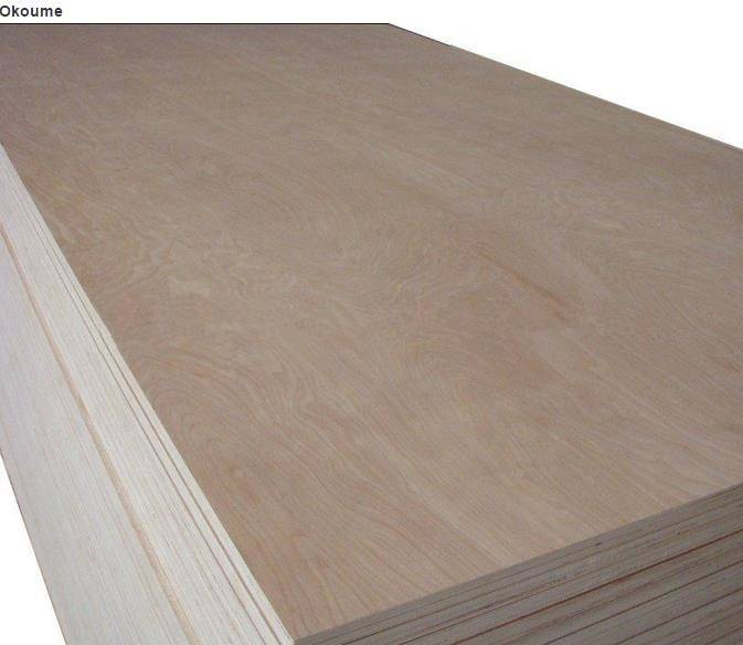 Bintangor Plywood & Okoume Plywood
