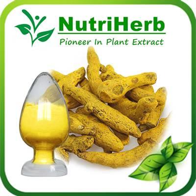 Natural Turmeric Root Extract 95% Curcumin