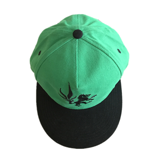 Customized Embroidery Logo Green Snapback Hat