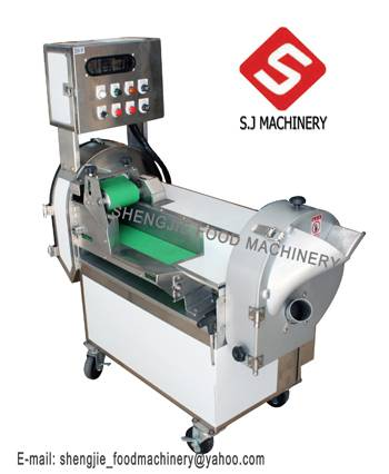 Multi-function dicephalous vegetable cutting machine has two frequency converters.