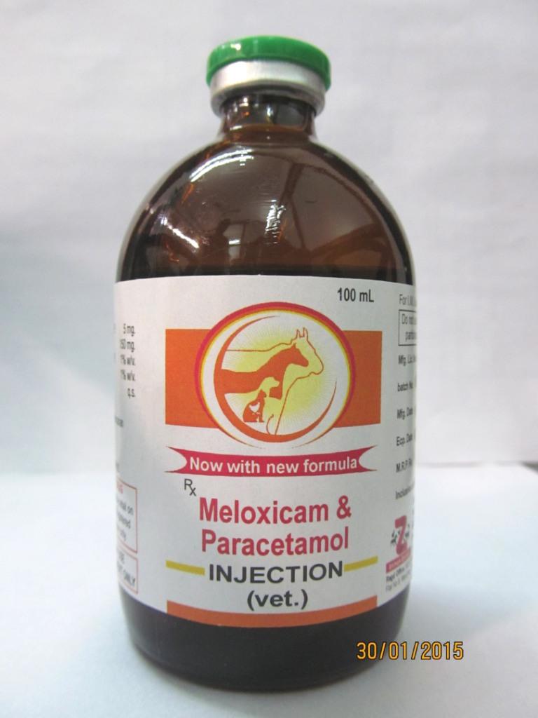 Veterinary Meloxicam Paracetamol Injection