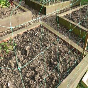 10cm mesh Green plastic bi-oriented plant support trellis net for vegetables