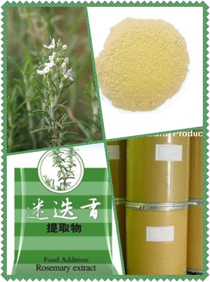 Rosenary extract (water soluble)