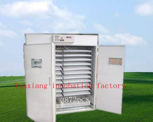 3872pcs automatic chicken egg incubator