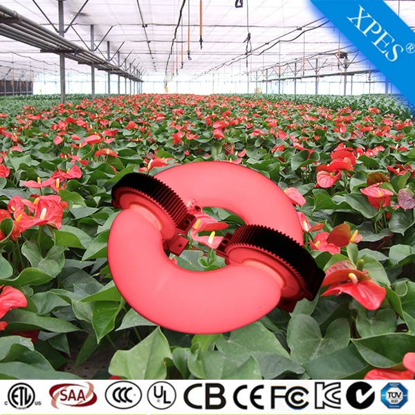 2017 NEW induction lamp 120w plant grow light bulb replace plant grow light for pepper growing