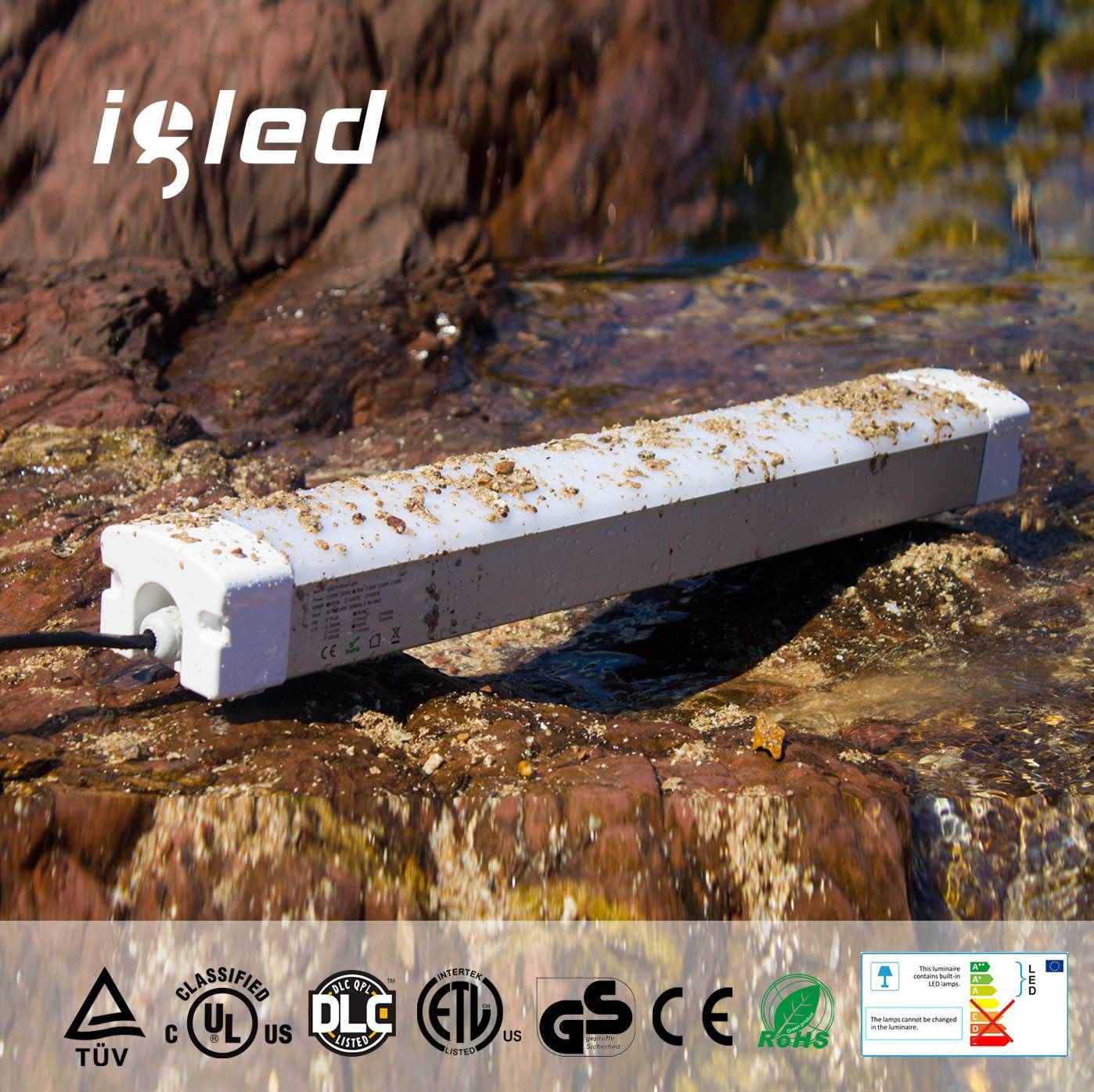 UL Dlc Approved IP65 Lighting Fixtures 4ft 50W China Manufacturer